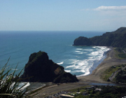DynaSpeak Social Club: Trip to Piha Beach
